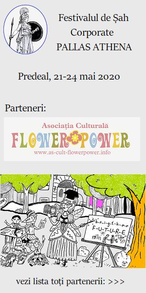 parteneri festival sah